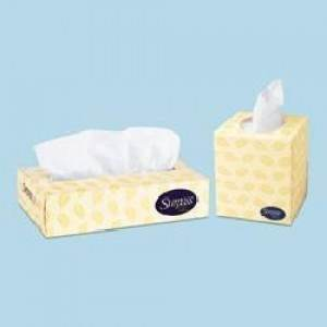 SURPASS BOUTIQUE FACIAL TISSUE WHITE