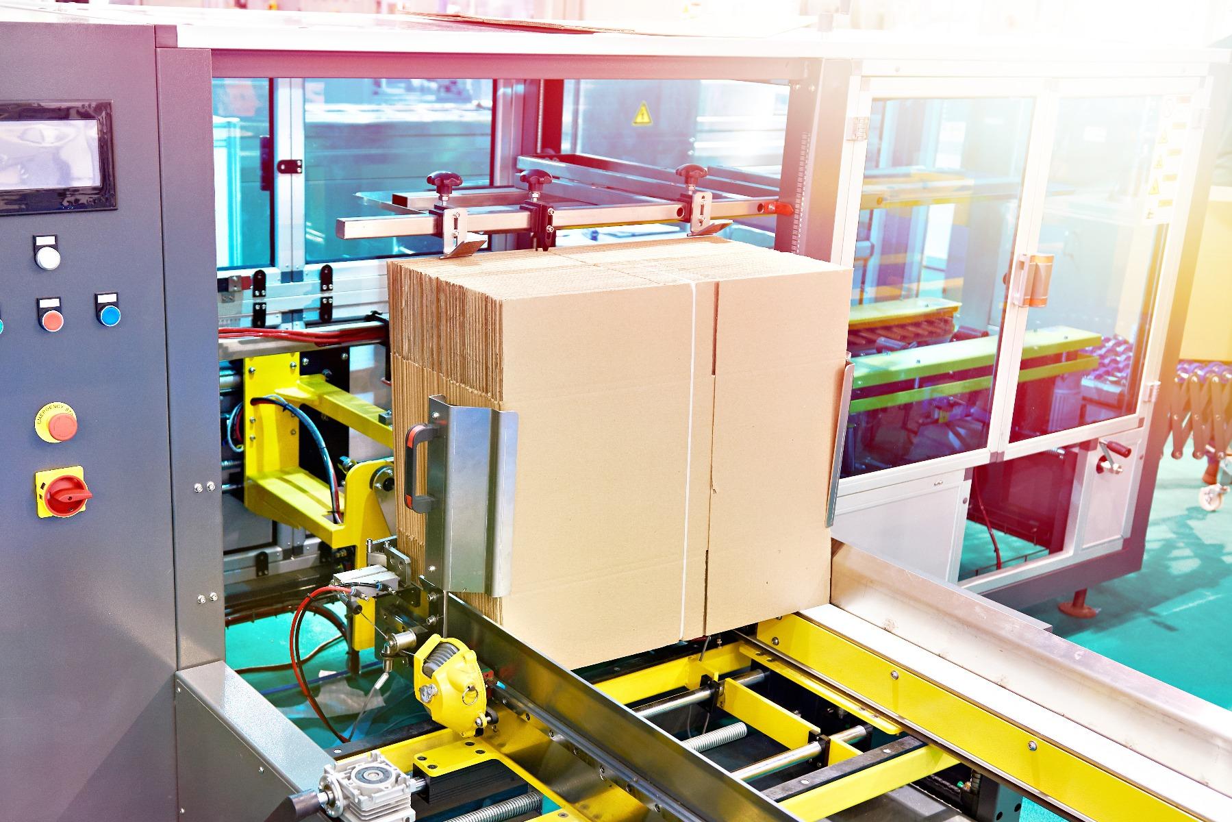 flat corrugated boxes entering carton tray erector via conveyor belt