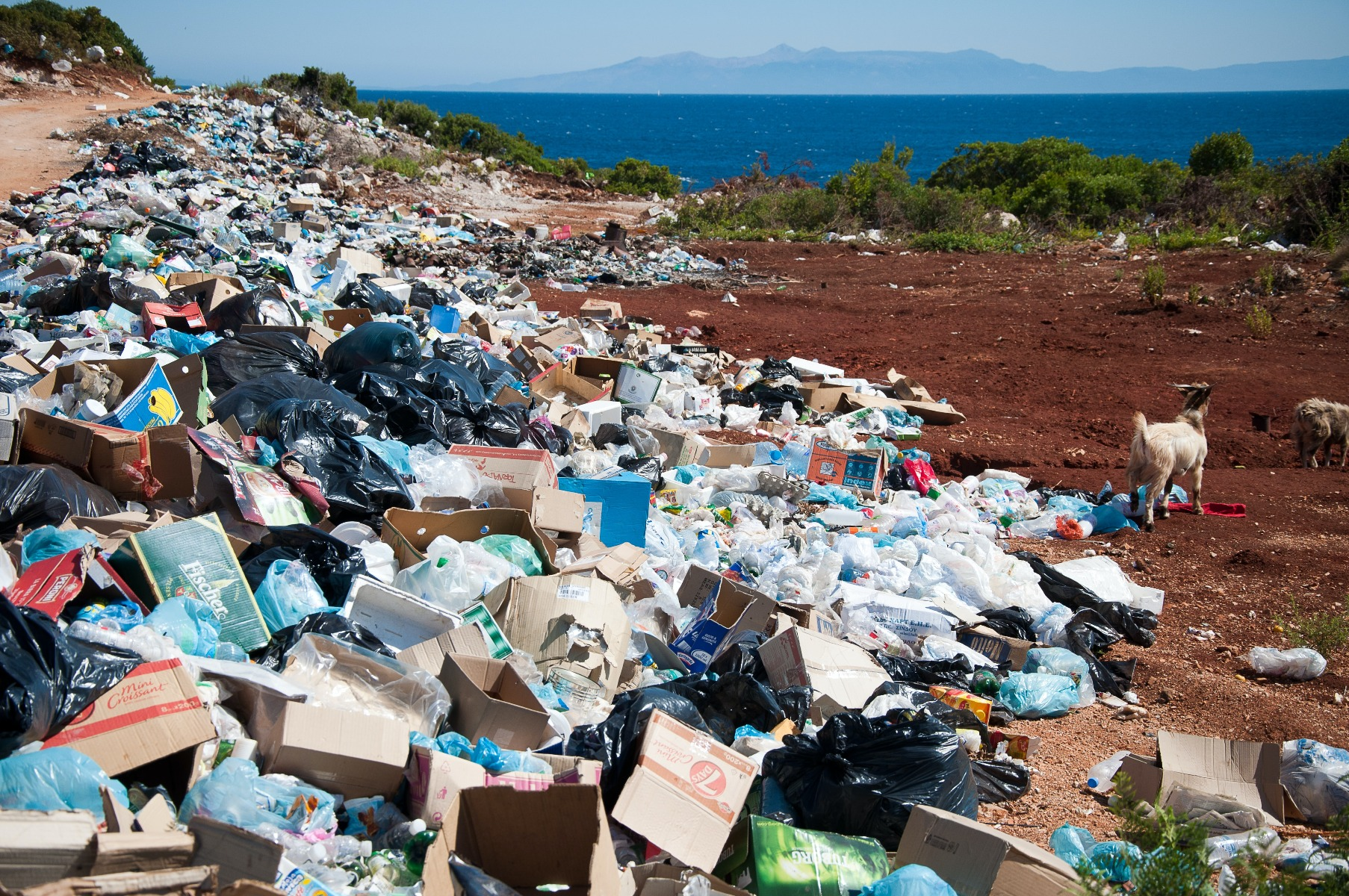large garbage patch with package waste near ocean