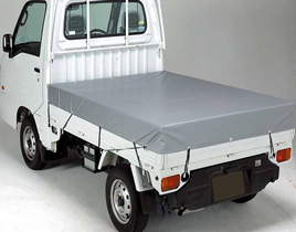 Truck Poly Liners
