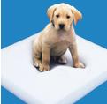 Foam & Cushioning FAQ